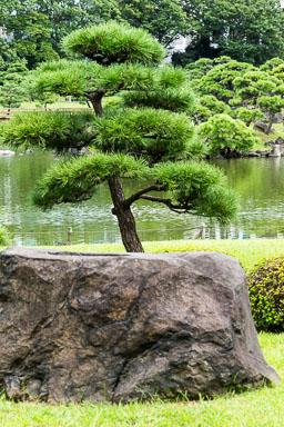 Japan-0004.jpg